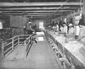 Condition Routiere Quebec >> Vie 1900-1915